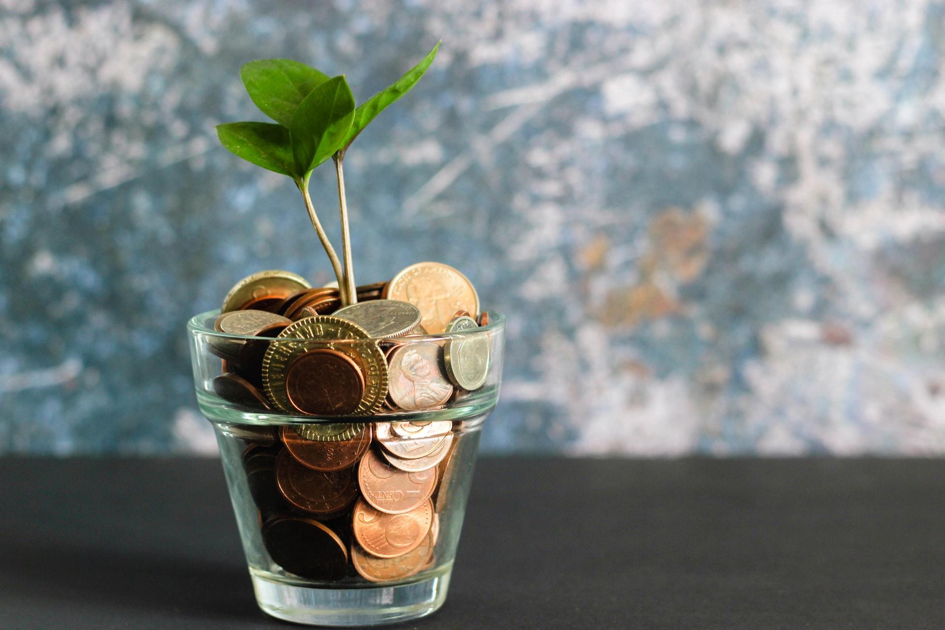 Should I Go With My Company-Chosen Superfund?