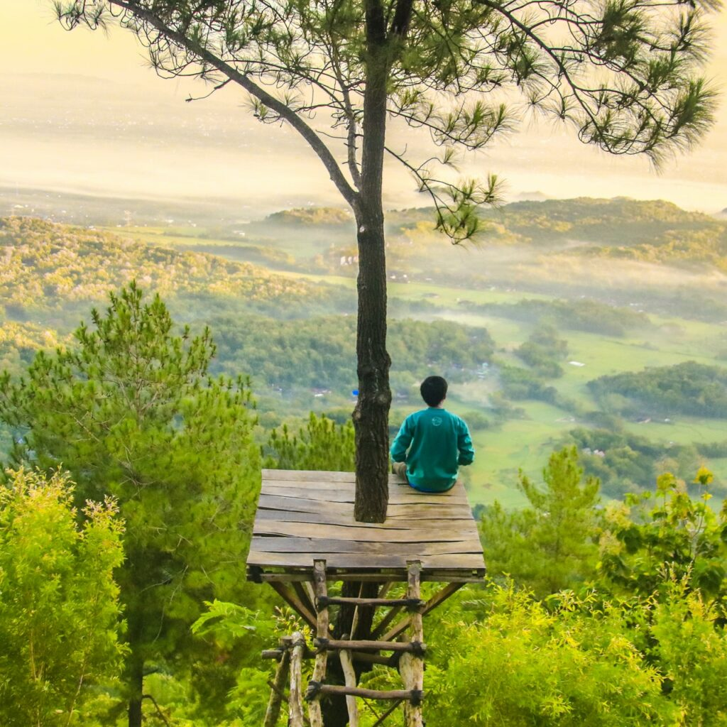 One person looking out across an abundant landscape